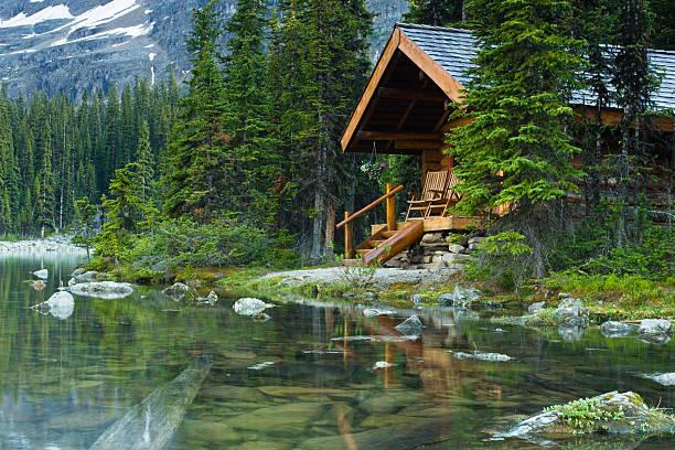 Log cabin hidden in the trees by the Lake Ohara in Canada:スマホ壁紙(壁紙.com)