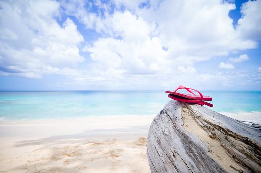 Log「Flip flops on wooden log, Batts Rock Beach, Barbados, Caribbean」:スマホ壁紙(1)