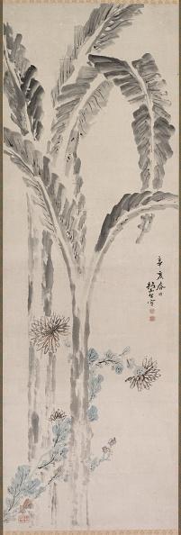 Tropical Tree「Banana Plant And Chrysanthemum (?)」:写真・画像(1)[壁紙.com]