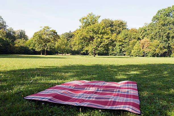 still life of blanket lying on grass in park:スマホ壁紙(壁紙.com)
