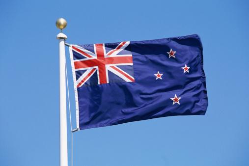 Kiwi「Flag of New Zealand」:スマホ壁紙(6)