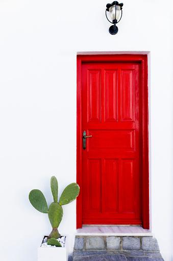 Front Door「Cactus near red door」:スマホ壁紙(11)