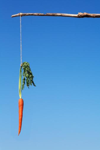 Pole「dangling a carrot」:スマホ壁紙(11)
