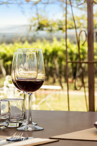 Kiwi「Wine tourism, vineyards, landscapes and glasses in open air.」:スマホ壁紙(17)