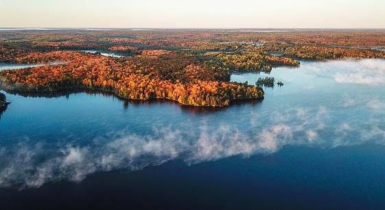 かえでの葉「カラフルな秋の森と青い湖、空中トップドローンビュー」:スマホ壁紙(19)