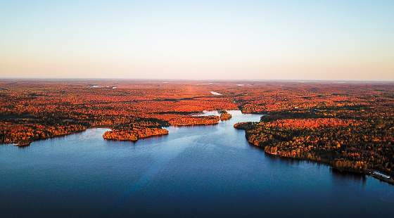 Boreal Forest「Colourful autumn forest and blue lake, aerial top drone view」:スマホ壁紙(11)