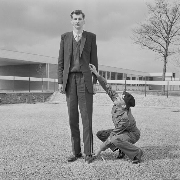 Offbeat「Tall Recruit」:写真・画像(7)[壁紙.com]