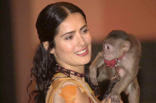 """Animal「Press Conference For The Film """"Frida Kahlo""""」:写真・画像(14)[壁紙.com]"""