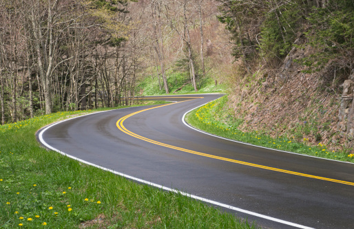 Hairpin Curve「Road curves in the Smoky Mountains」:スマホ壁紙(7)