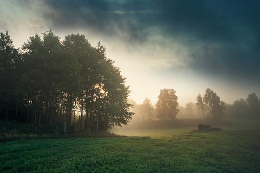 Agricultural Field「Landskap i Sverige」:スマホ壁紙(16)
