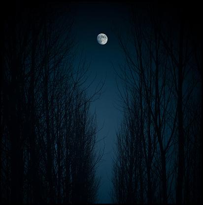 Moon「Spain, Madrid, Moon」:スマホ壁紙(2)