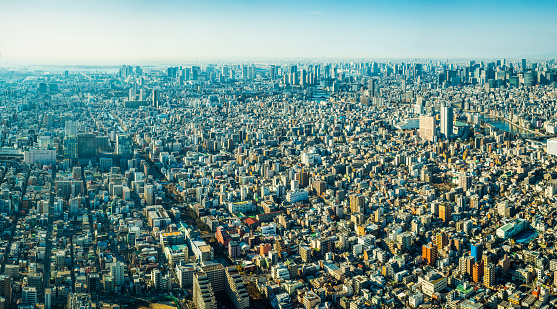 Tokyo Tower「Tokyo aerial panorama over crowded cityscape skyscrapers Sumida river Japan」:スマホ壁紙(10)