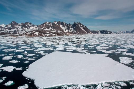 Greenland「Sea Ice」:スマホ壁紙(11)